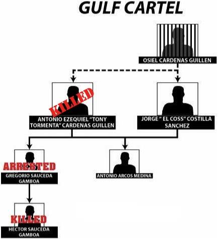 Gulf org chart